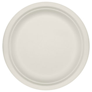 Plato plano celulosa blanca reciclable Ø 250x20 mm.